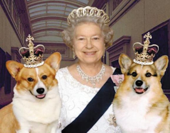 柯基與女王