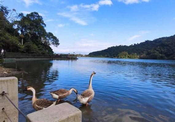 梅花湖 風景照