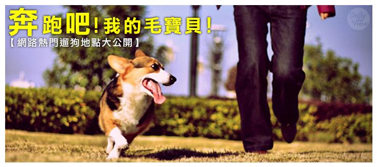 奔跑吧!我的毛寶貝!【網路熱門遛狗地點大公開】