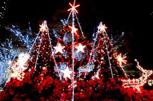 歡樂耶誕平安夜!全台耶誕十大景點