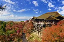 心誠則靈!來到日本你一定要去的十大神社!