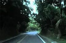 命案撞鬼怨氣多!盤點台灣10大「靈異死亡公路」