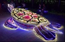 台灣燈會好評一面倒 網友最感動的其實是這片「最美風景」