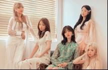 【你問我調查】老婆上榜了!2019韓女團TOP20 第8名超紅驚傳解散?