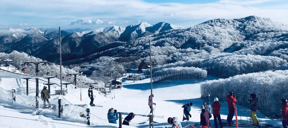 日本滑雪新手必看!最熱門TOP10日本滑雪場介紹