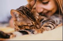 回家先吸貓、沒洗澡不能上床!生活中十大強迫習慣你中幾個?