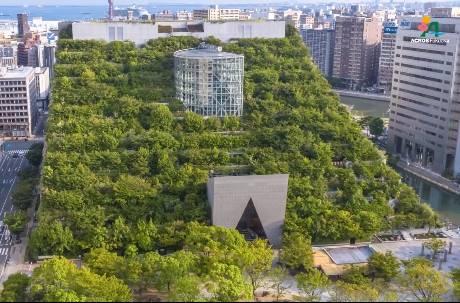 60年後真的變森林? 日本「綠大樓」落成25年現況驚人