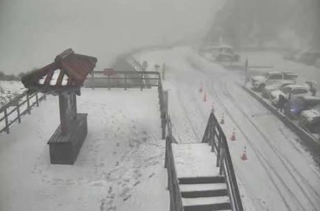 寒流來襲台灣飄雪美翻!網友回報全台各地降雪情況