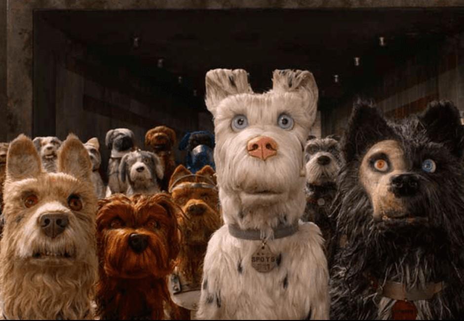 12種汪星人夢境神解析!夢到這顏色狗代表你「桃花火山」大爆發