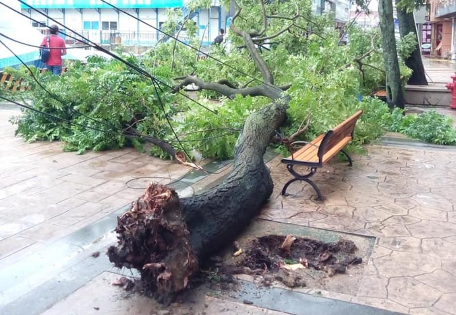 影/山竹肆虐香港!強風灌破窗、大樓隨風搖擺 驚悚場景如災難片