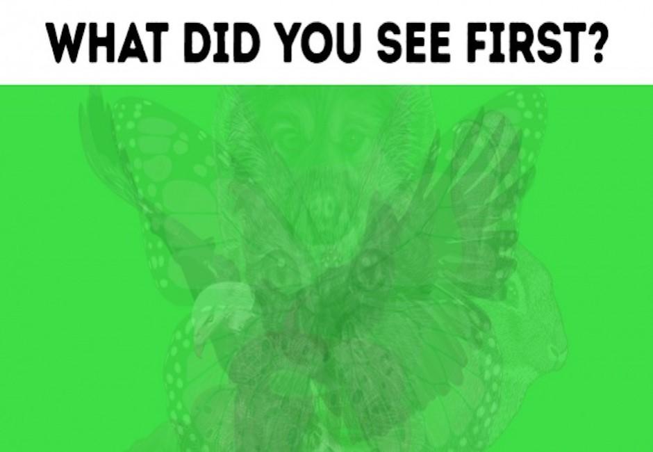 你看到什麼?一張動物圖揭性格秘辛…「發現蛇」的人網友瘋搶