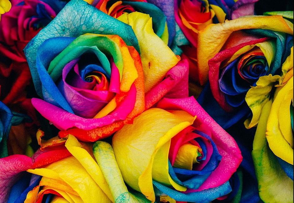 推特瘋傳「16色性格測驗」超夯!選2個顏色就能讀懂你