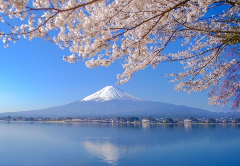 東區羅姐不夠看!最狂房東在富士山 日政府每年花大錢「租山頂」