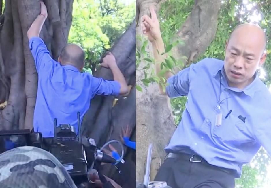 又出奇招!韓國瑜爬樹視察登革熱驚見「這裡有洞」網友看傻眼