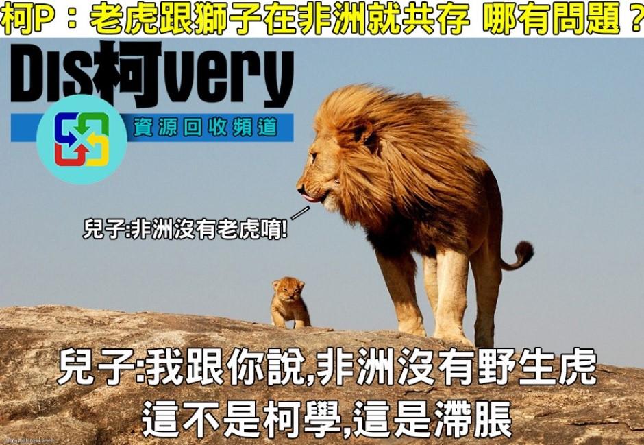 老虎獅子共存非洲?網友轟:這不是柯學,是滯脹