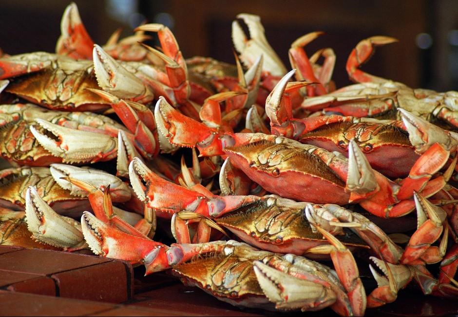 想吃蟹卻不會殺?一招「麻醉」螃蟹鎖肉質 專家曝清洗、料理關鍵