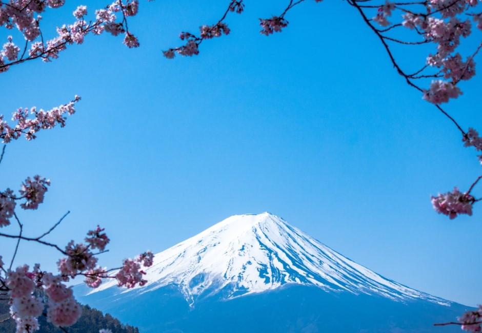 日本2020全新開放景點! 口袋名單不藏私一次報給你知