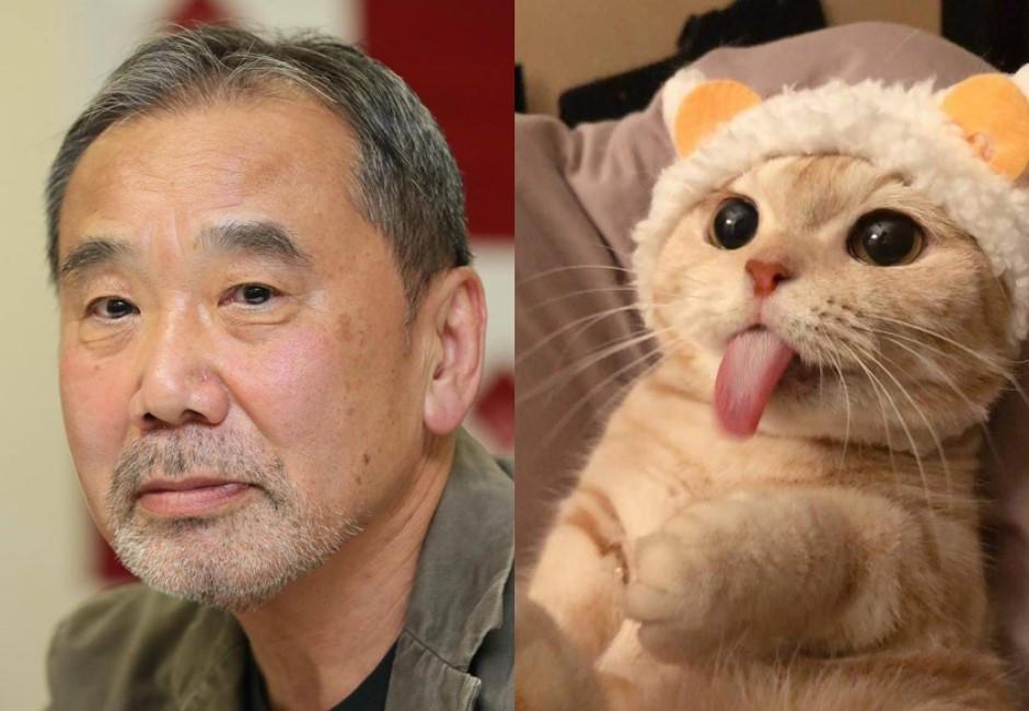厭世感爆棚?村上春樹:大部分的煩惱,養貓就會好了!
