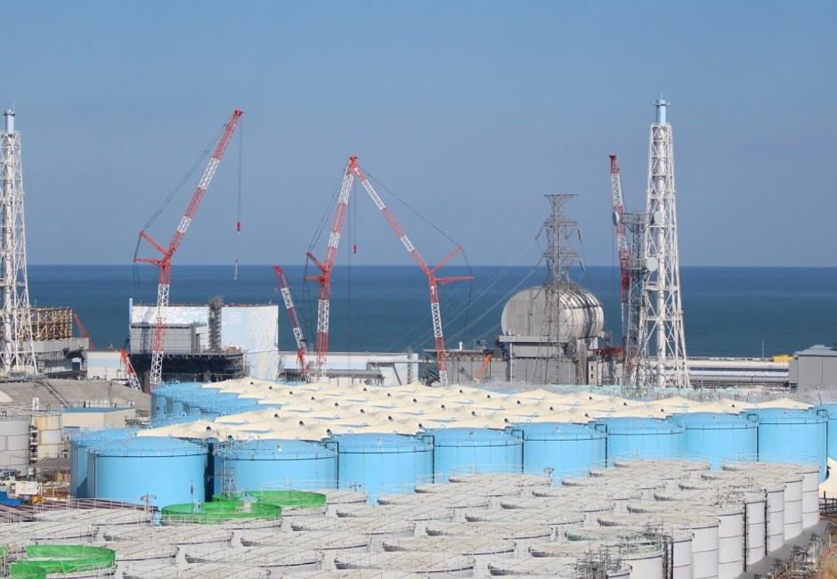 懶人包/日本核廢水為何將排放大海?國人愛吃3大海鮮要注意