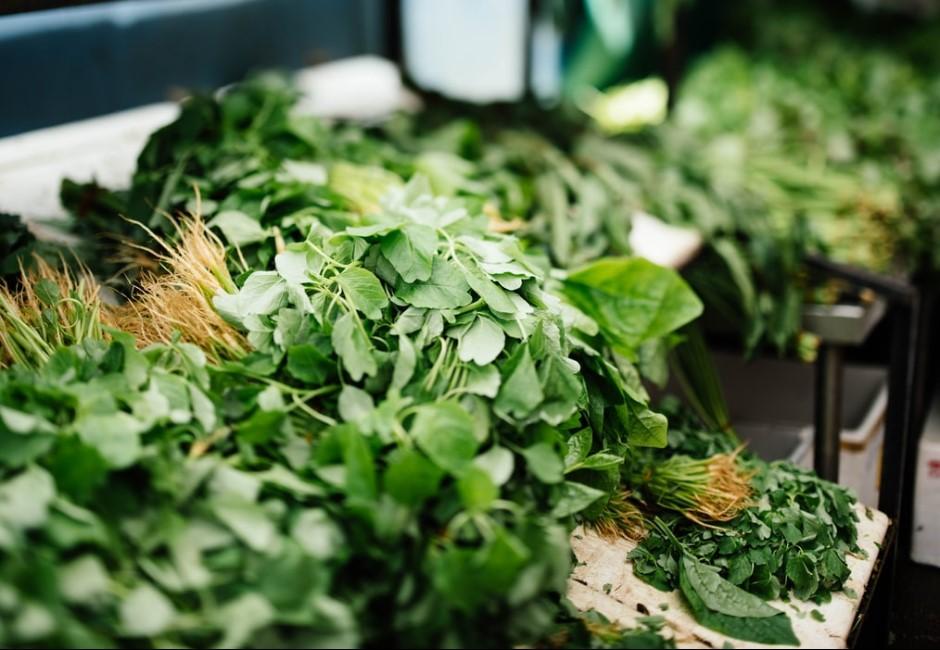 茴香比香菜還可怕?網提「地表剋星」蔬菜陣線聯盟:吃一次就陣亡
