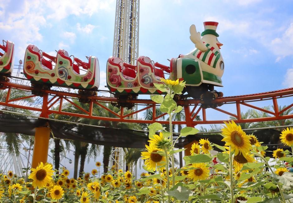 「微解封業者」懶人包/劍湖山、遠雄海洋公園等遊樂園將開放