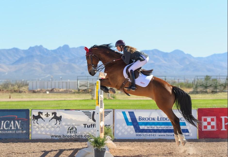 馬術比賽的馬自備還是大會提供?馬術協會解答:馬也有護照