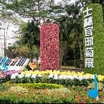 台北士林官邸菊展