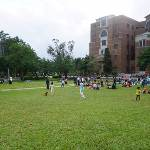 野餐/台灣大學